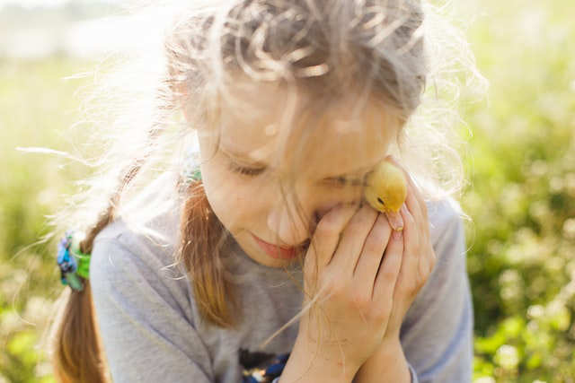 Emotional Impact of Divorce On Children